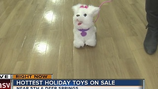 Hottest holiday toys on sale Black Friday at Toys R Us - Video