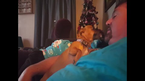 Dog LOVES giving his Owner Kisses