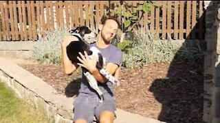 COVID-19: Man reunites with dog after 3 months apart