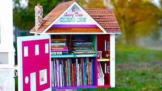 5 Steps to Curb Appeal with a Free Little Library - Video