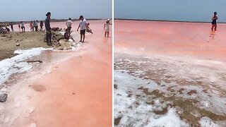 Lucky Tourist Captures Stunning Images Of Colombian 'Pink Sea'