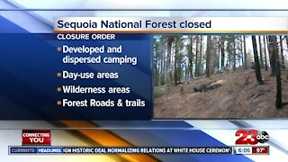Sequoia National Forest closed due to conditions