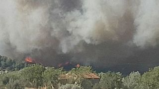 Firefighters Injured After Brush Fire Moves Toward Homes in Southeast France - Video