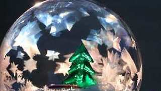 Natural Snow Globe Made With Liquid Bubble in Freezing Weather - Video
