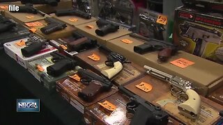 Brown County may become a 2nd Amendment Sanctuary County