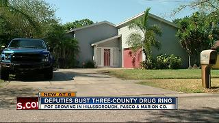 Deputies bust three-county drug ring - Video