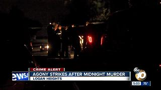 Woman collapses after murder in Logan Heights - Video