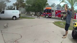 Brave Deputy rescues dog from house fire