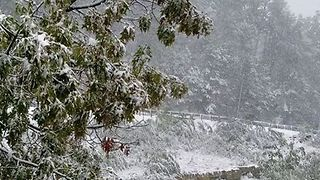 East Tennessee Sees Snow on the Mountains - Video