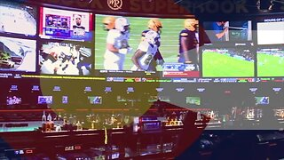 Colorado voters deciding if the state should allow gambling on sports
