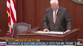 Florida's 29 electors all cast votes for Trump - Video