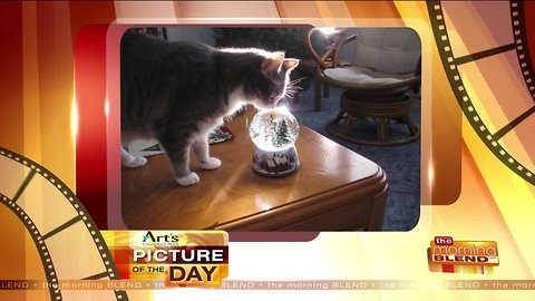 Art's Cameras Plus Picture of the Day for November 13!