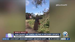 Nun with chainsaw cuts downed tree from Hurricane Irma - Video