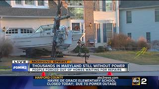 Wind wreaks havoc on trees and power lines - Video