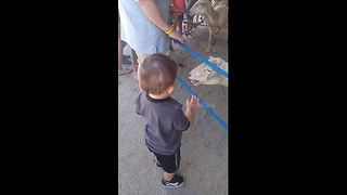Boy gets scared by goat at petting zoo - Video