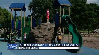 Suspect charged in Humboldt Park sexual assault - Video