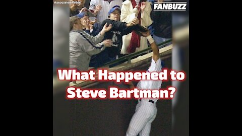 What Happened to Steve Bartman?