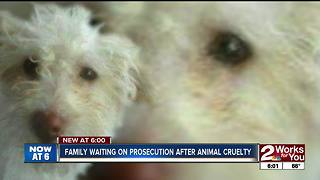 Family waiting for prosecution after animal cruelty incident - Video