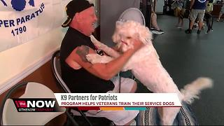 K9 partners for Patriots - Video