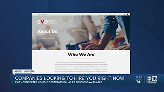 Phoenix business looking to fill 20 positions immediately