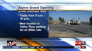 Alpine Christmas Tree lot opening today