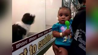 Little Girl Scared Of A Little Puppy - Video
