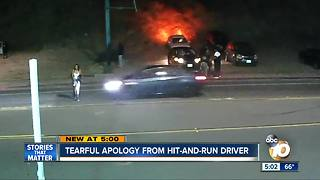 Tearful apology from hit-and-run driver