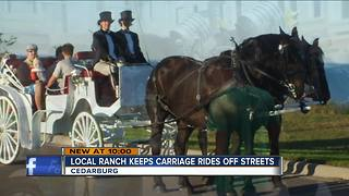 Carriage company stresses safety after accident