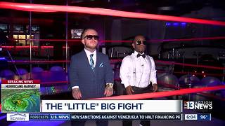 Mini-Mayweather and mini-McGregor duking it out at Las Vegas strip club - Video
