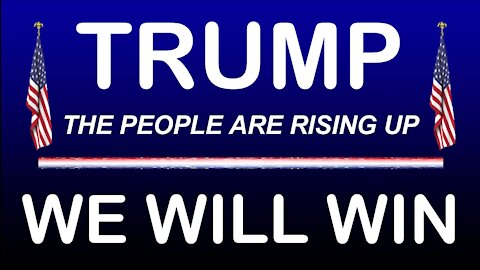 """""""TRUMP * WE WILL NOT ACCEPT THE FRAUDULENT ELECTION * STAND UP"""