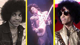 The Evolution of Prince