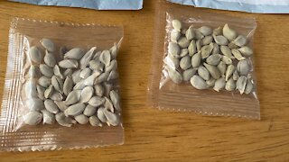 Amazon Bans Foreign Seed Sales In The U.S.