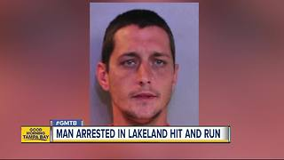 Lakeland man arrested for hit and run involving girl, 11 - Video