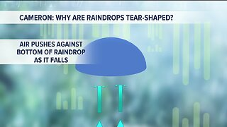 Kevin's Classroom: Why are raindrops tear shaped?