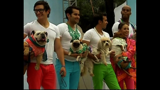 Doggy Fashion Show - Video