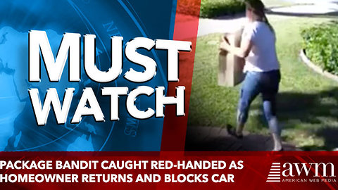 Package Bandit Caught Red-Handed as Homeowner Returns