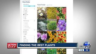 Finding the best plants