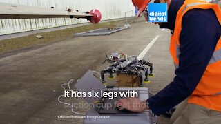 This bot walks along the blades of wind turbines!
