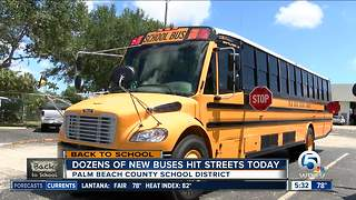 Dozens of new school buses hit the streets in Palm Beach County - Video