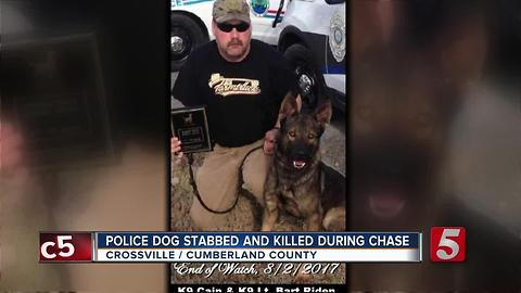 Crossville K9 Killed While Chasing Suspect