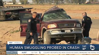 Human smuggling probed in Imperial County crash
