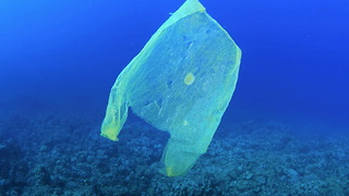 This Biodegradable Plastic Bag Is Edible - Video