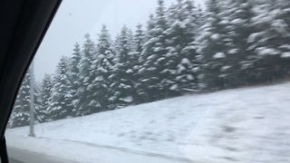 Driving in winter wonderland