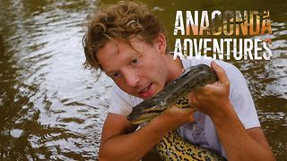 Deep in the Amazon: The snake hunter's anaconda quest - Video