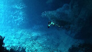 Free divers explore Tonga's mysterious and beautiful Swallow's Cave