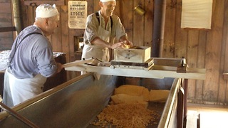 Cheese-makers cut cheese curd the old fashioned way - Video