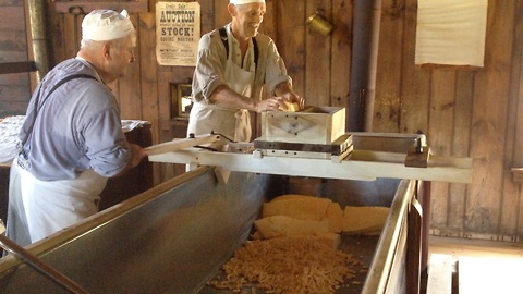 Cheese-makers cut cheese curd the old fashioned way
