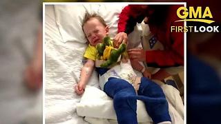 3-year-old in body cast after trampoline accident - Video