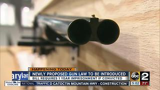 New gun law to be introduced requiring 1 year sentence for illegal handguns - Video
