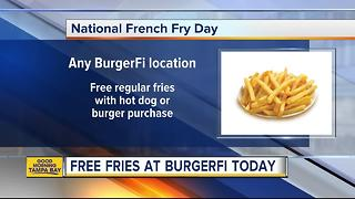 National French Fry Day in Tampa Bay - Video